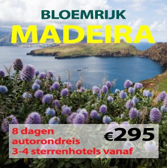 8-11 daagse autorondreis Bloemrijk Madeira