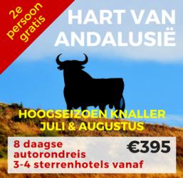 8 daagse autorondreis Hart van Andalusië
